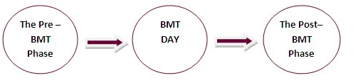bmtphases